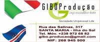 Logo Gibo