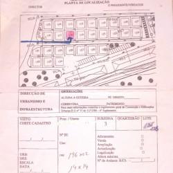 0 土壤植物 196 MQ Vila na Ponta do sol-camara 市 da Ribeira Grande grande Santo Antao 1 eeevai.com